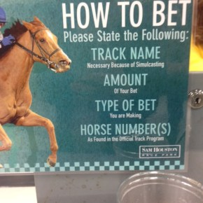 How to Horse Race in 10 Steps