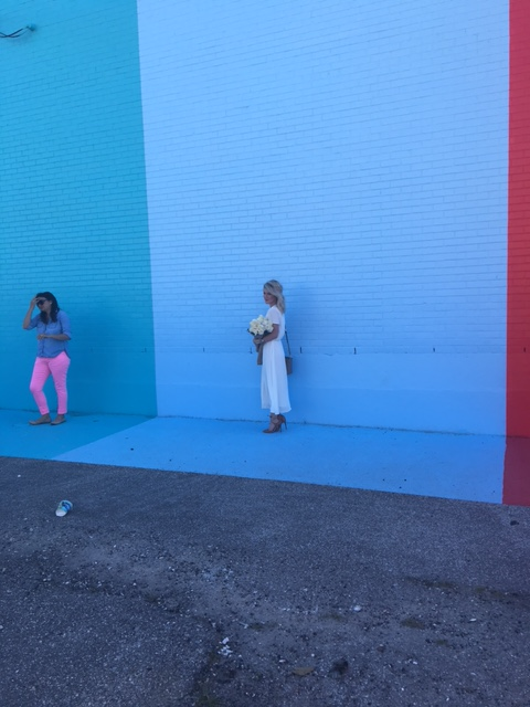 Sugar and Cloth Color Wall Houston