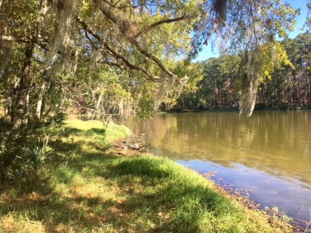 hiking Sam Houston Forest map