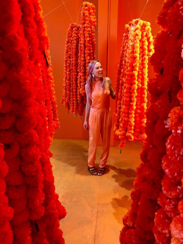 Flower Vault Houston Montrose Location