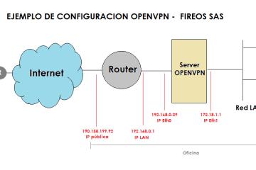 Ejemplo Openvpn FireOS SAS