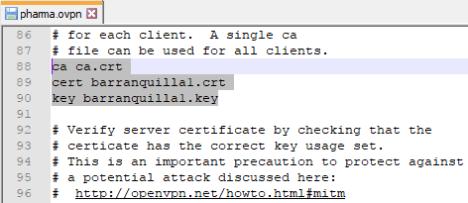 Nombres de certificados OpenVPN