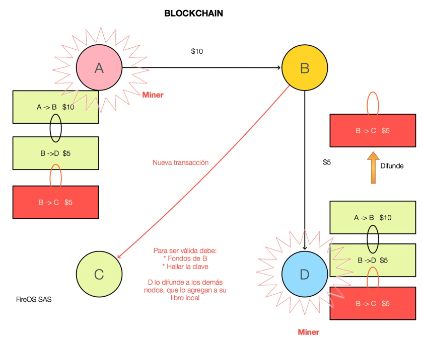 La transacción y su key se distribuye a la red
