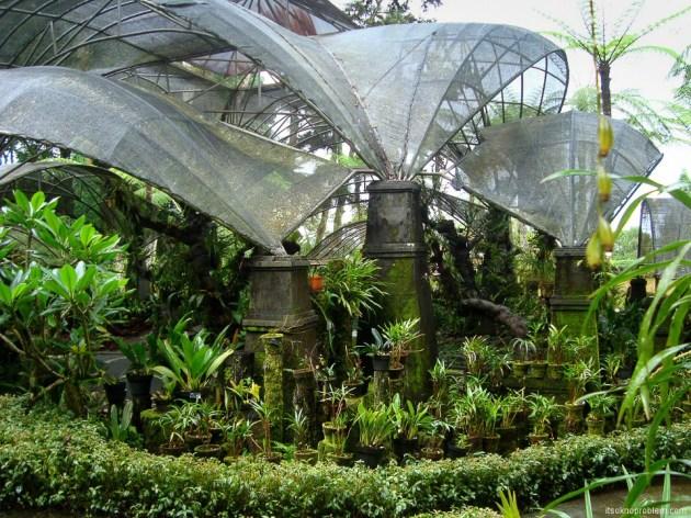 Ботанический сад Бедугул