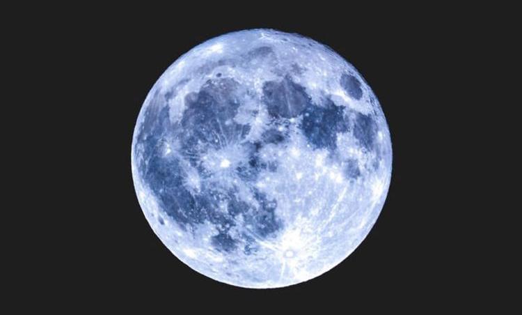 Blue flower moon