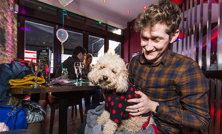 Go Speed Dating With Your Dog This Valentine's Day
