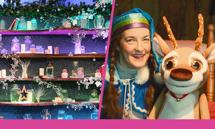 Norbert the enchanted reindeer will be lighting up Christmas at  St David's Dewi Sant