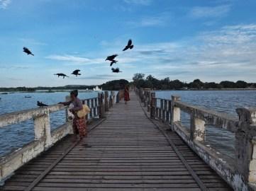 Woman feeding birds and monk