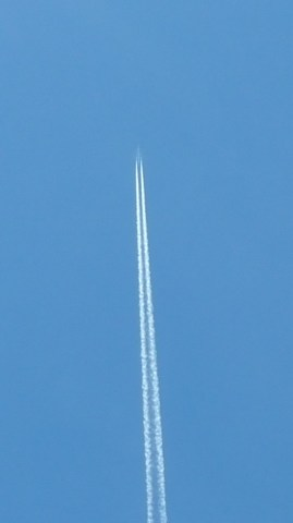 Contrails were everywhere!