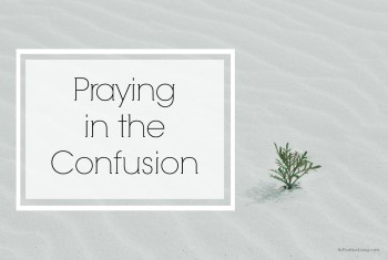 Praying in the Confusion