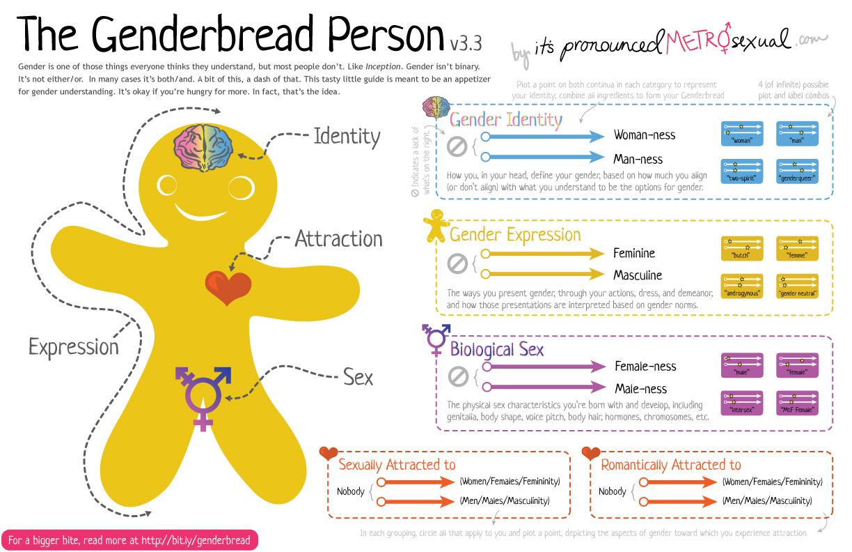 The Genderbread Person V3