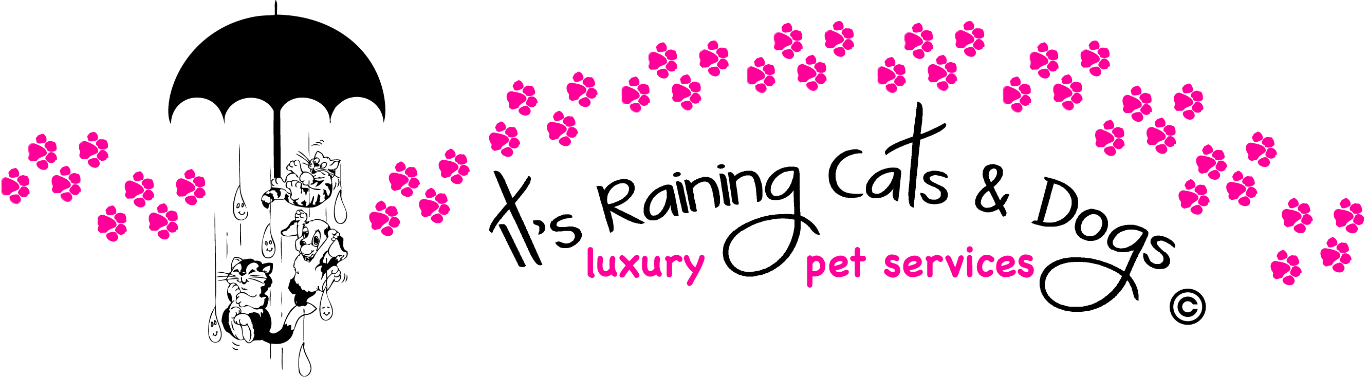 It's Raining Cats & Dogs Luxury Pet Resort