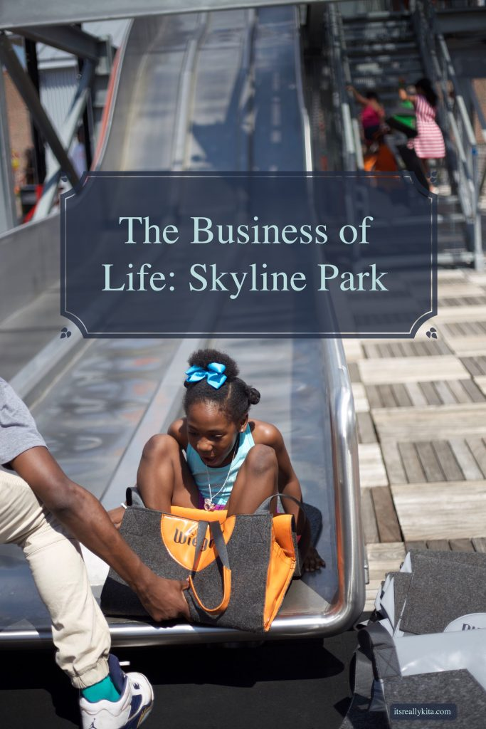 The Business of Life: Skyline Park