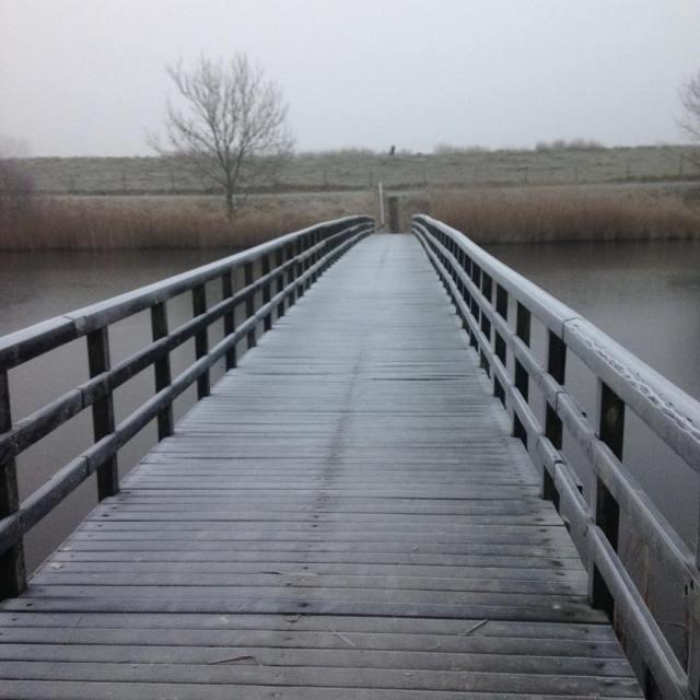 Throwback naar zon 2 weken terug walking nature frost