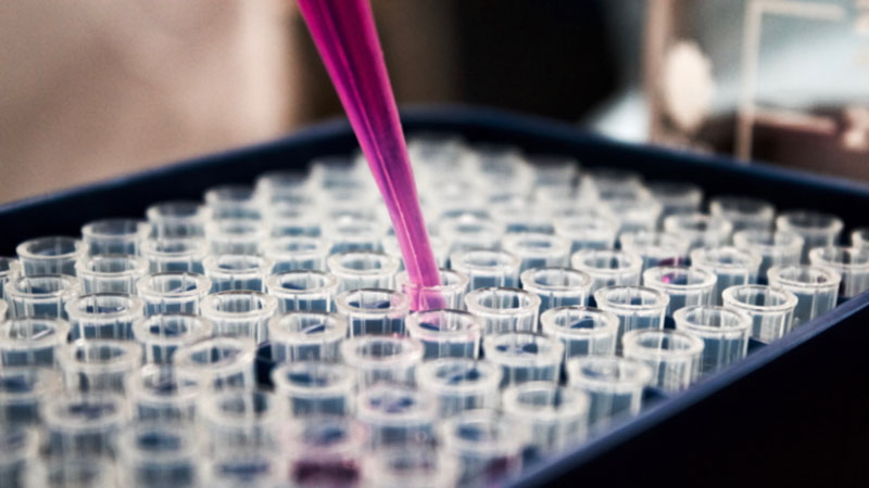 Adult Stem Cells: What Are They Anyway?