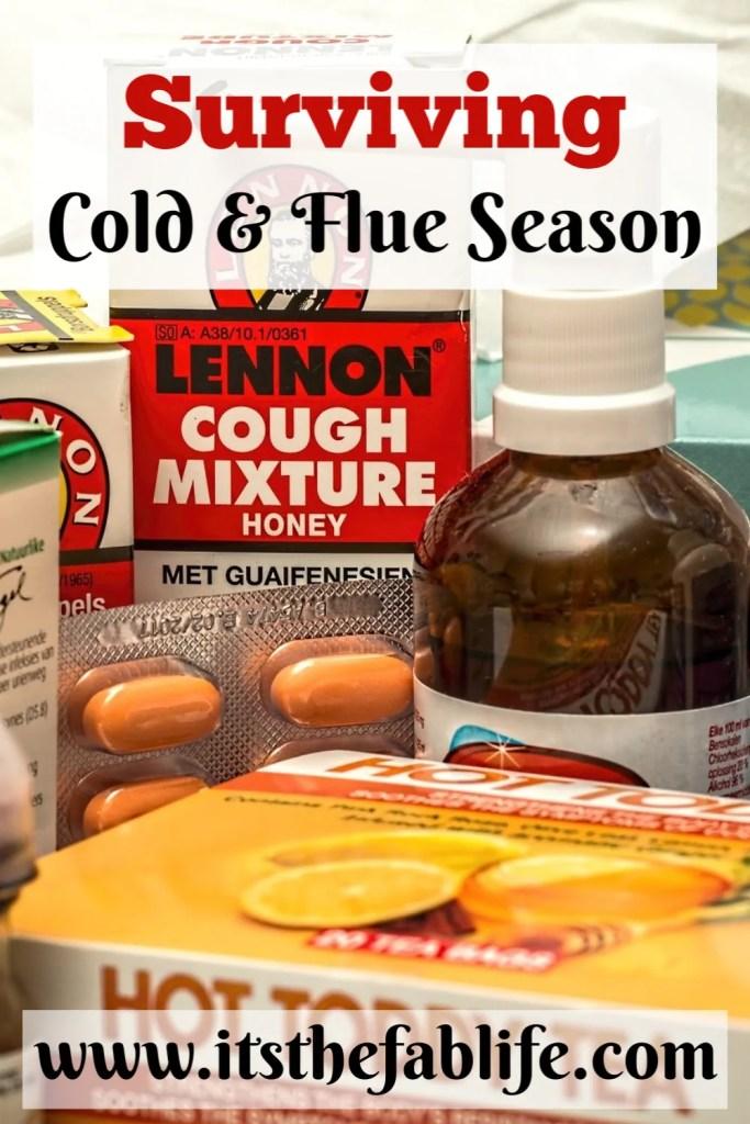 Surviving Cold and Flu Season   Cold Symptoms   Flu Symptoms   Treatment for Cold and Flu   #sick #symptoms #cold #flu #survival
