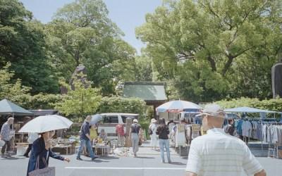 ITSUMO SUMMER FLEA