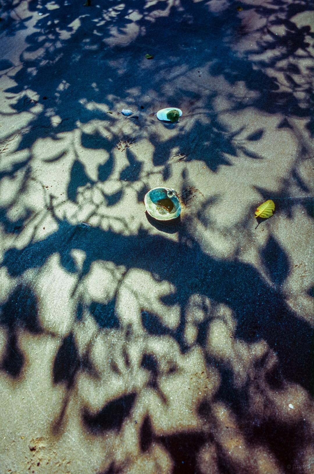 Summer Pop-up – Sukui on Bowen Island