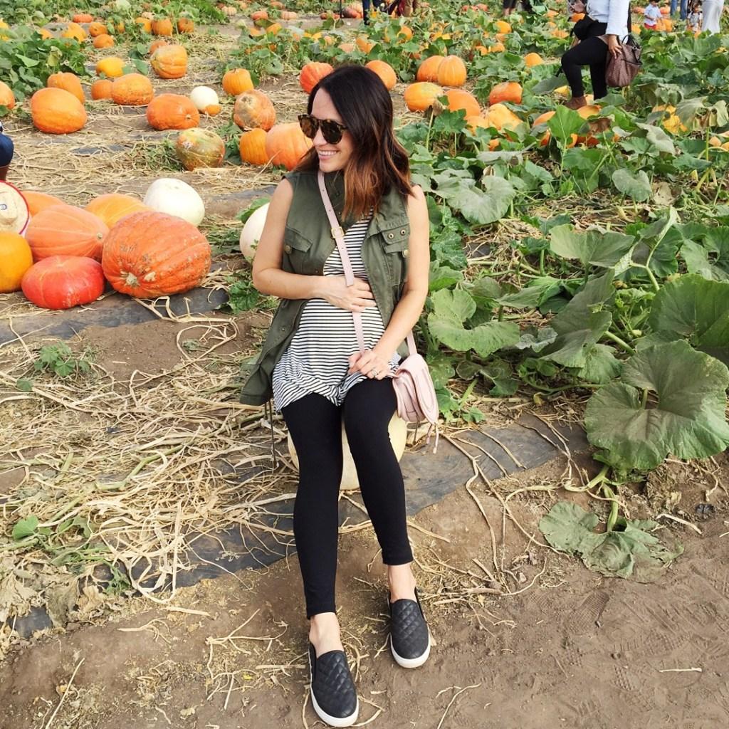 pumpkin patch, itsy bitsy indulgences