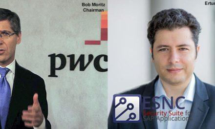 Affaire PwC vs ESNC : la parole à la bêtise