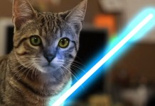 may the 4th be with mew
