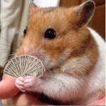 人間はめんどくさい生き物だから、浪費家やダメ人間はキャッシュカードを捨てるとお金が貯まる!