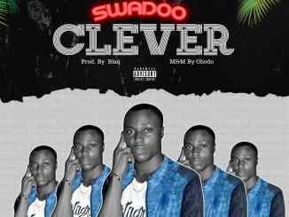 Swadoo - Clever