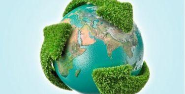 Día-Mundial-del-Medio-Ambiente--un-momento-para-reflexionar