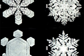 First microscope image of snowflake patterns