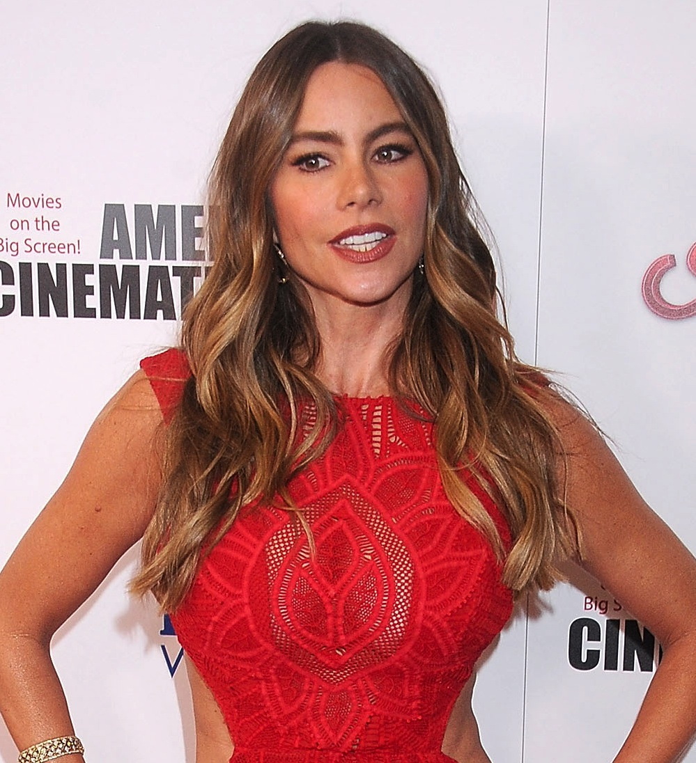 LOS ANGELES, CA - OCTOBER 30:  Actress Sofia Vergara arrives at the 29th American Cinematheque Award honoring Reese Witherspoon at the Hyatt Regency Century Plaza on October 30, 2015 in Los Angeles, California.  (Photo by Gregg DeGuire/WireImage)