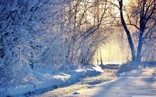 winter_morning_light-wallpaper-1440x900