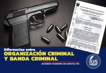 Diferencias entre organización criminal y banda criminal