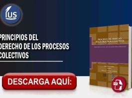 Principios del derecho de los procesos colectivos