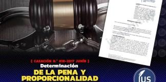 Determinación de la pena y proporcionalidad