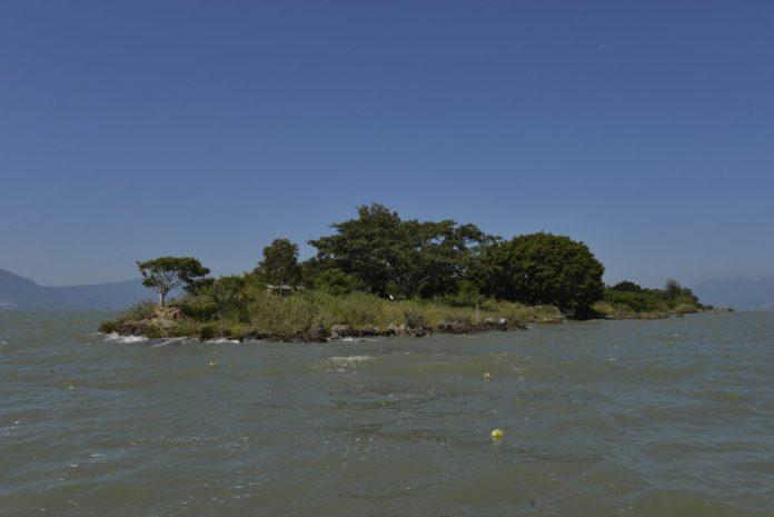 Isla de los Alacranes