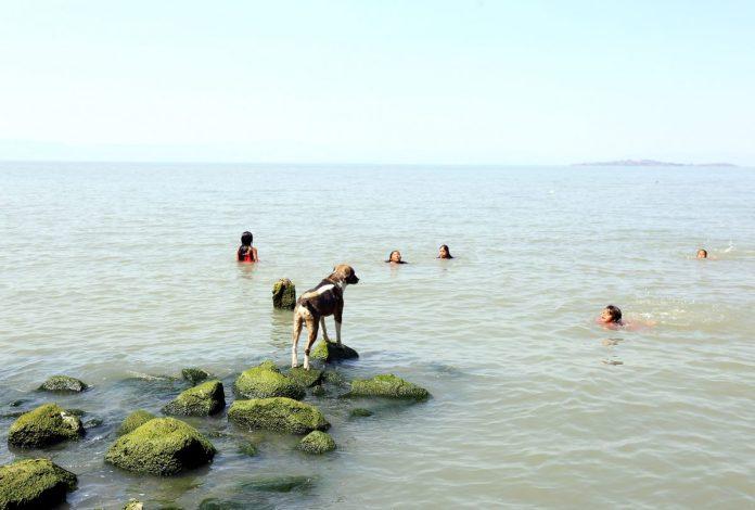 Lago de Chapala, desde San Pedro Itzicán, Poncitlán