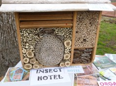Angie's insect hotel