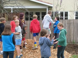 Mulch attracting the kids