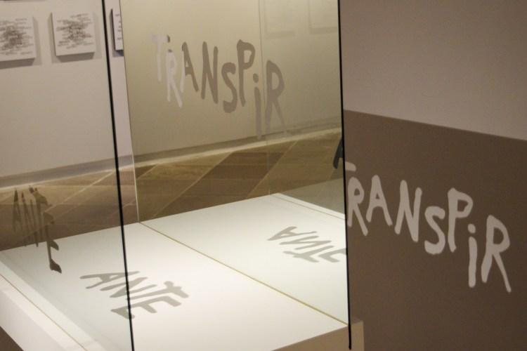 """Obra tridimensional com a palavra """"transpir"""" e """"ante"""" refletida em vidros"""