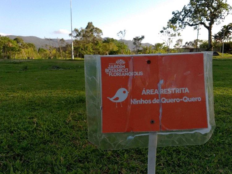 """Placa vermelha fixada no gramado onde se lê: """"Área restrita - Ninhos de Quero-Quero"""
