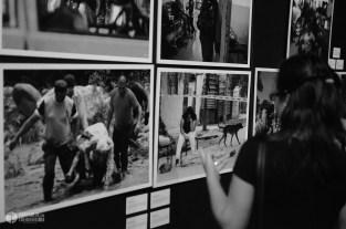 Muestra #fotoperiodismo #Argentino en #Rosario #ARGRA #FOTOGRAFIA (C) IVAN PAWLUK , reservados todos los derechos http://www.ivanpawluk.com/ https://www.flickr.com/photos/pawluk/ http://www.facebook.com/PawlukIvan
