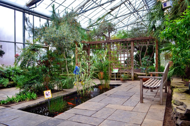 A Rainy Day at RBG: Ontario\'s Royal Botanical Gardens » I\'ve Been ...