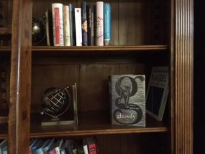 I thought this spooky hotel library would make a fitting resting place for this book