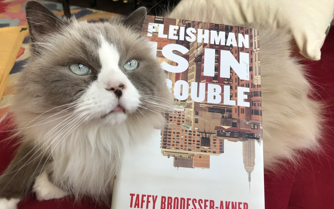 Book Review: Fleishman Is In Trouble by Taffy Brodesser-Akner