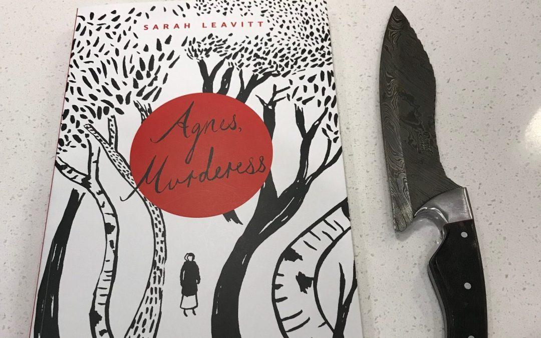 Book Review: Agnes, Murderess by Sarah Leavitt