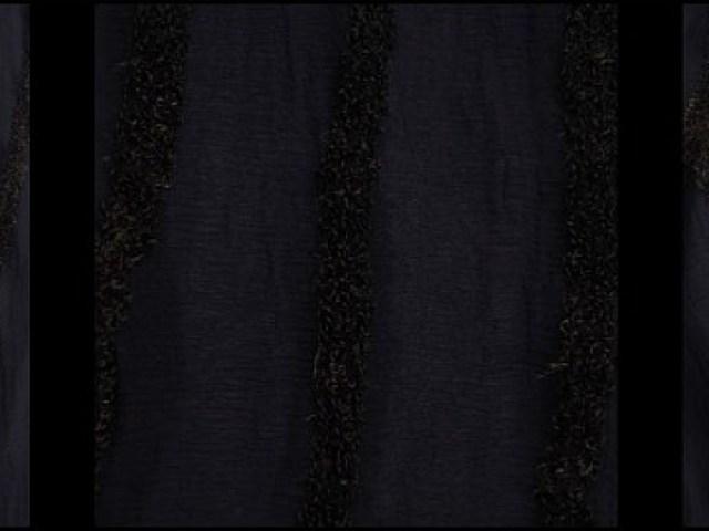 Cedar Onyx Embroidered Silk Chiffon