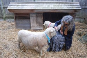 Cindy, owner of Saturday Farm, makes every part of her life as authentic as her Baa Boys. In her search for authentic clothing, she learned about Ivey Abitz bespoke dresses through a friend's recommendation.