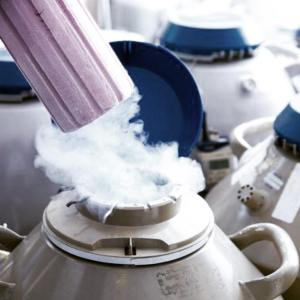 Γίνεται κρυοσυντήρηση ωαρίων ή σπερματοζωαρίων στην εποχή του κορονοϊού;