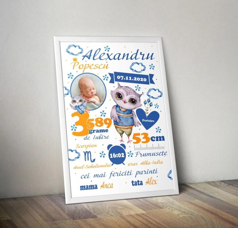 Tablou Personalizat A4 Bufnita Pentru Baieti v1