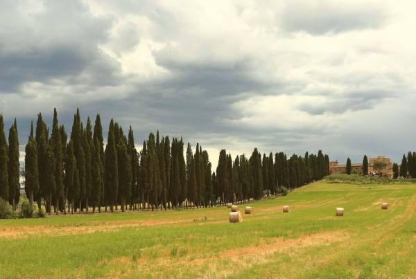 Regione Toscana Turismo Visit Tuscany
